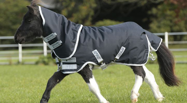 Time to restore and pack your winter horse rugs
